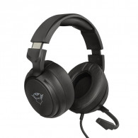 Trust GXT 433 Pylo Headset Head-band Black